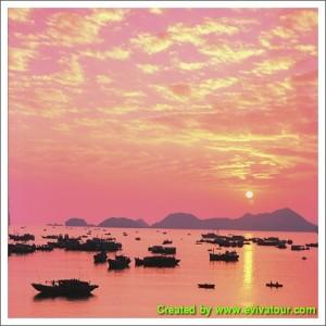 Halong Bay Tour 2 days