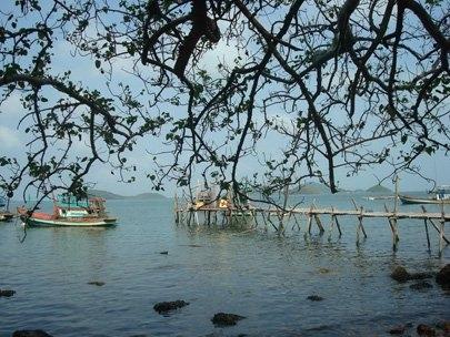 A whale of a time at Nhum Ba Island