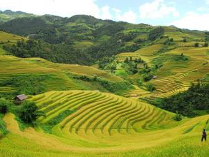 Tourists flock to Sa Pa villages