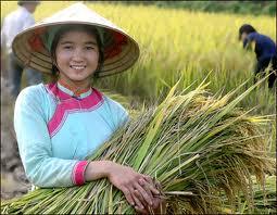 Giay ethnic group